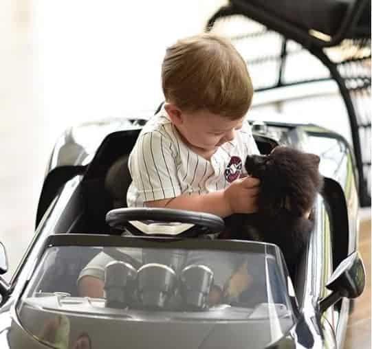 Andressa Suita compartilha linda foto de Gabriel com sua cachorrinha