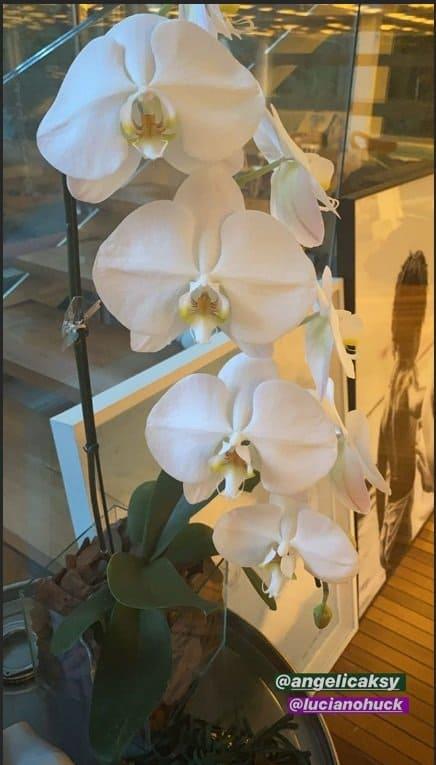 Flores que Angélica mandou para Giovanna Ewbank