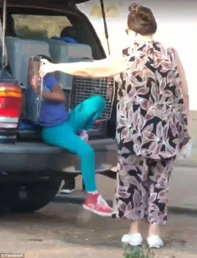 A neta saindo da gaiola de cachorro