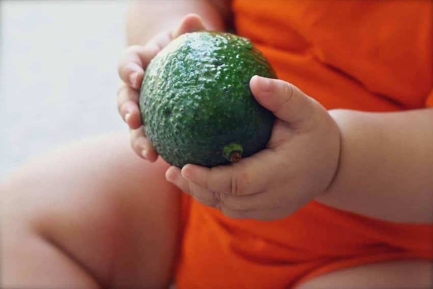 Algumas dicas podem fazer o pequeno aceitar melhor a papinha de bebê