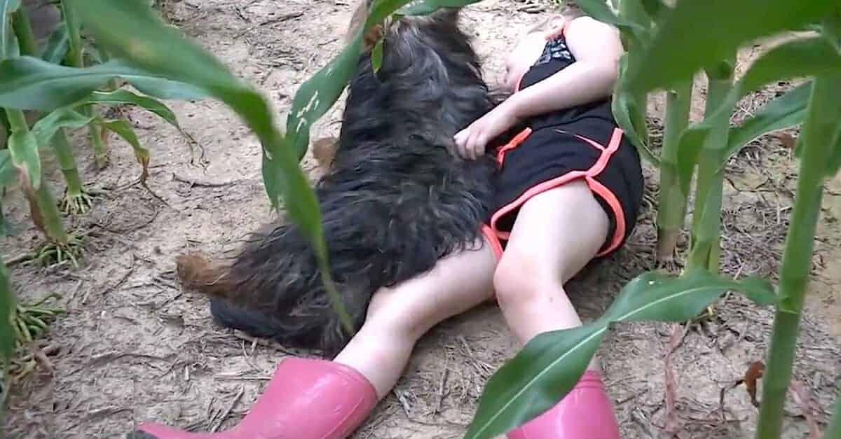 A menina com seu cachorrinho na plantação de milho