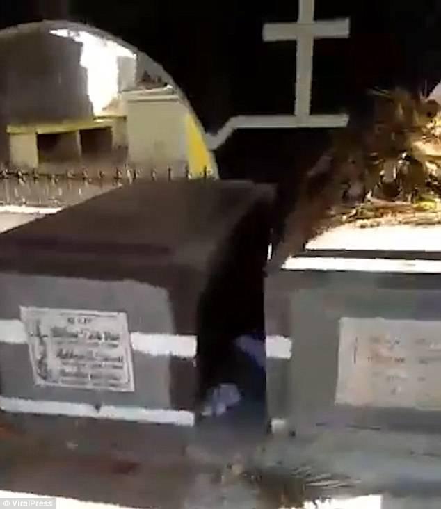 Bebê é abandonado em meio aos túmulos