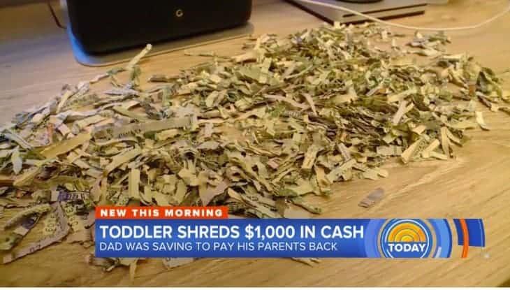 Veja como ficou o dinheiro que o bebe de apenas dois anos triturou