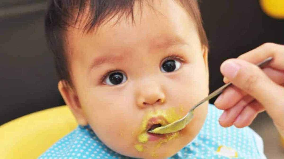 Entenda se existe uma idade ideal para oferecer frutas para o bebê