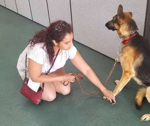 Cachorro com sua nova dona após ter sido abandonado pela outra família que teve um bebê