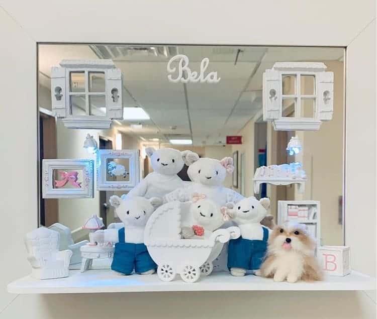 Porta maternidade da bebê de Claudia Leitte