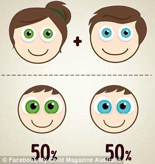Olhos verdes e azuis