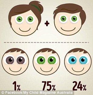 Os dois pais tem olhos verdes