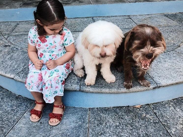 Filha de José Loreto e Débora Nascimento com os pets da família