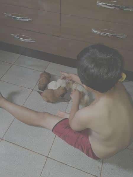 Imagem do menino Bruninho brincando