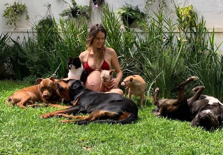 Laura Neiva e seus seis cachorros no fim da gravidez