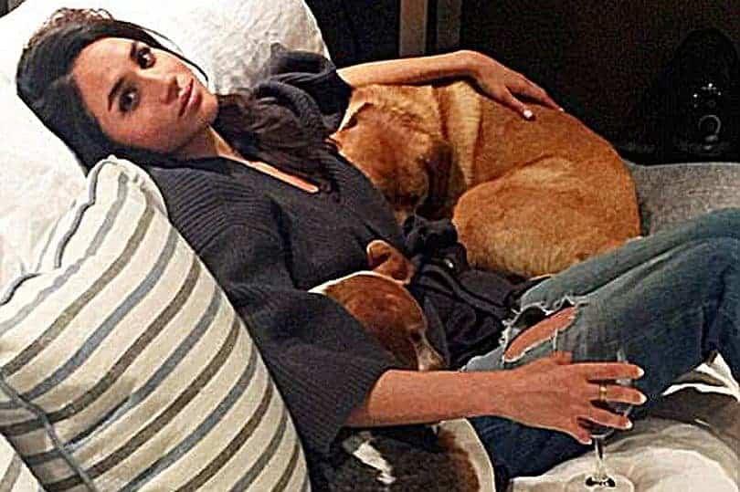 A duquesa Meghan Markle com seus dois cachorros