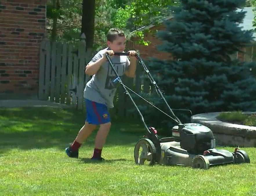 Os vizinhos se inspiraram na ideia do menino e decidiram ajudar