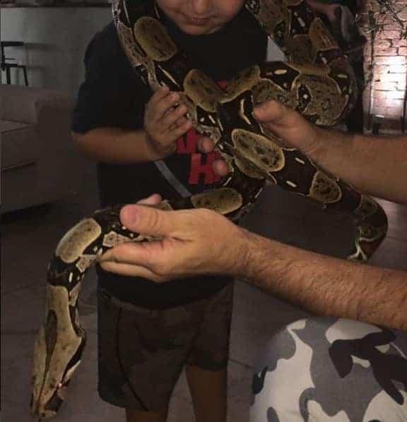 Momento em que Pedro aparece segurando a cobra