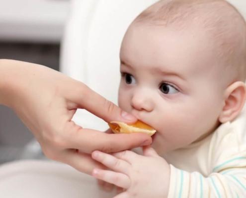 Saiba quais frutas o bebê pode comer