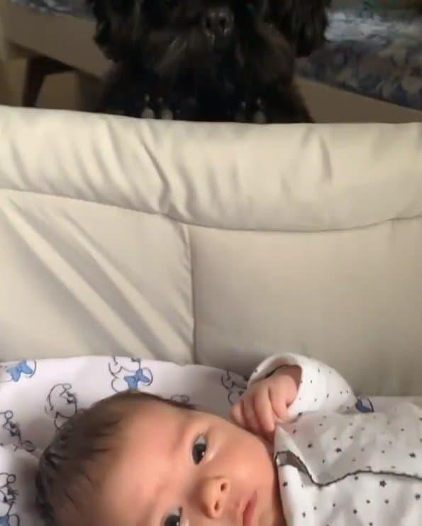 Rafael Vitti mostrou sua filha com o cãozinho deles
