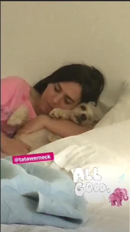 A futura mamãe Tatá Werneck com um de seus cãozinhos