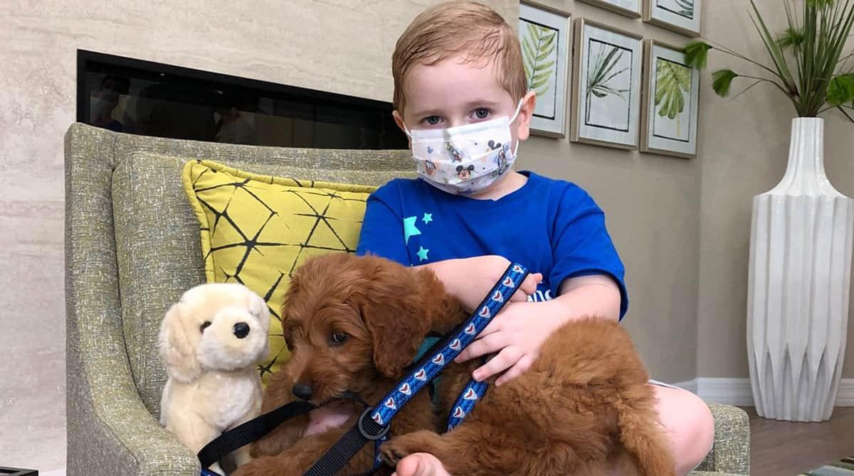 Durante o tratamento contra o câncer, o menino quis ganhar um cachorro