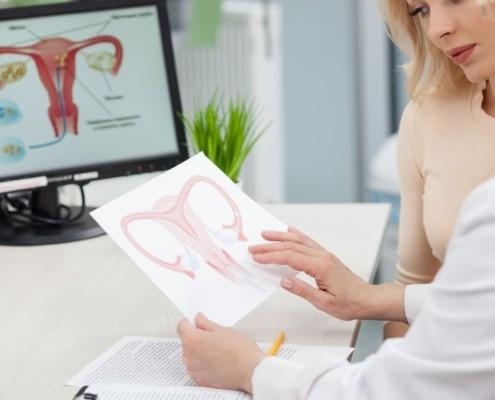 Veja o que é a reserva ovariana