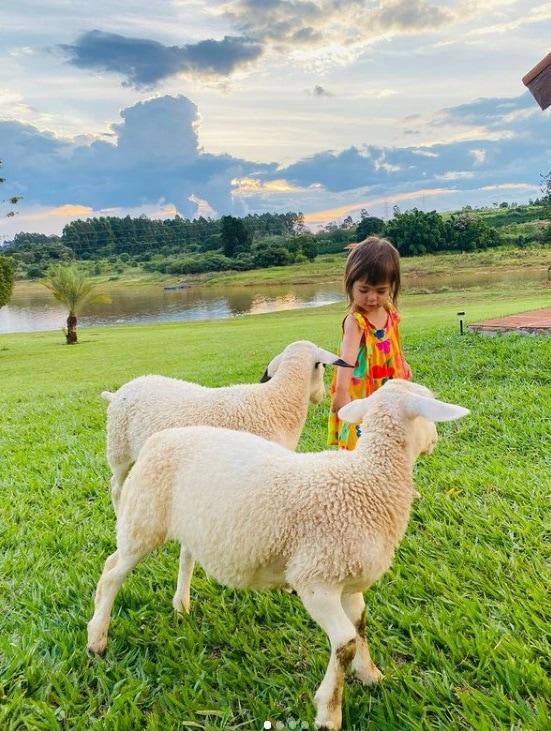 A bebê de Sabrina Sato com os dois coelhinhos